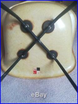 Paire de chaises Eames DAX Zénith 1st generation